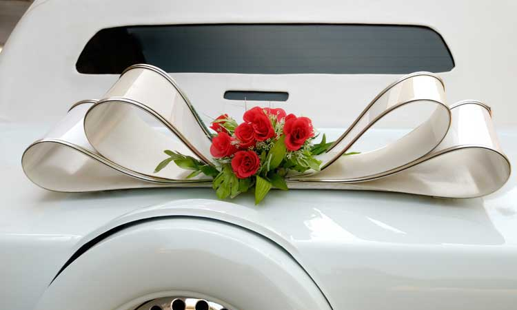 Houston Limo Service - Proms & Homecoming Services